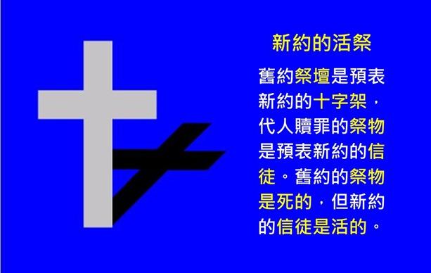 投影片29